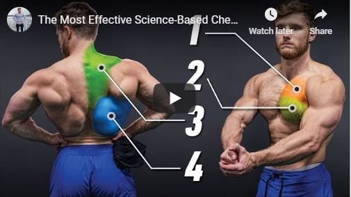Chest and Back Exercises for Beginners: Video Guide