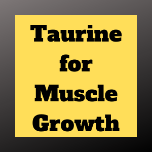 The Importance of Taurine for Muscle Gains