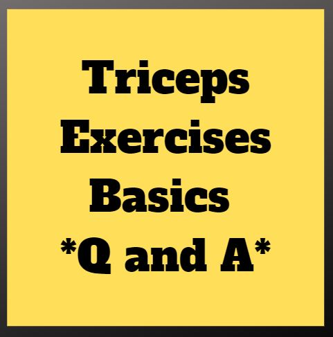 Triceps Exercises Basics *Q and A*