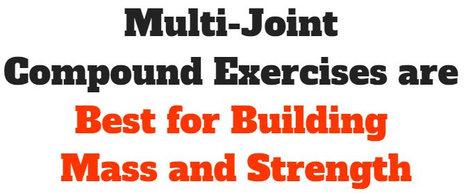 multi-joint compound exercises