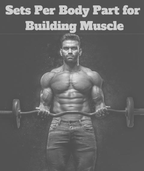 sets per bodypart for building muscle